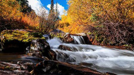 Maroon creek through colorful trees in Colorado