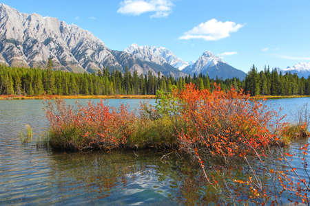 Colorful  autumn bush in the lower Kananaskis lake in Alberta,Canada 版權商用圖片 - 155404546