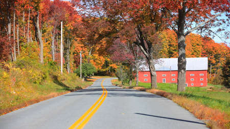 Colorful autumn trees by asphalt road in rural Vermont Фото со стока
