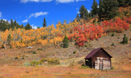 Old abandoned cabin with fall foliage in rural Colorado