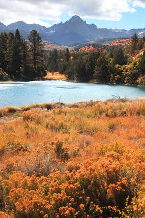 Colorful autumn bushes and grass by the small pond in San Juan mountains ,Colorado