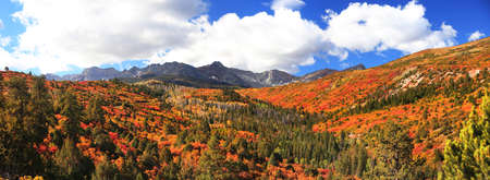 Panoramic view of majestic San Juan mountains with colorful fall foliage in autumn time