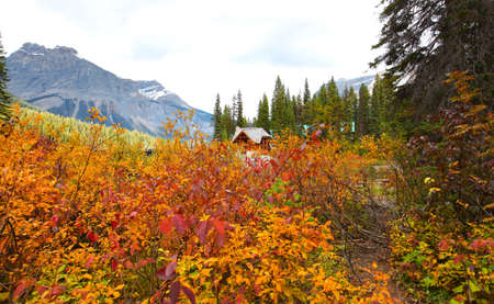 Cabins at Emerald lake with fall foliage in British Columbia, Canada