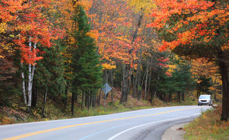 Colorful autumn trees by scenic route 327 near Mont Tremblant in Quebec 版權商用圖片