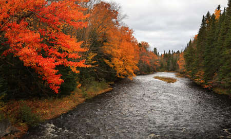 Scenic river with colorful autumn trees on either side in rural Quebec