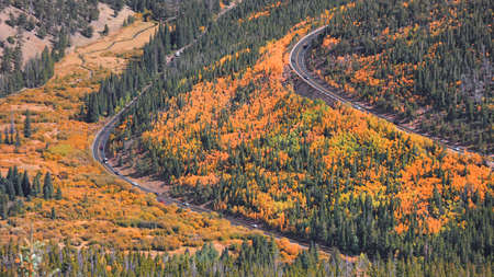 Fall foliage along scenic Trail ridge road in Colorado