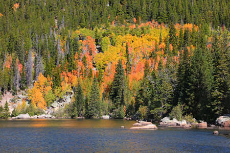 Conifer trees along with fall foliage by scenic Bear lake in Colorado