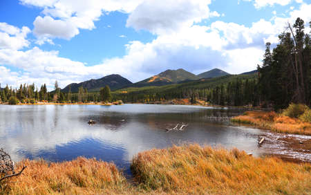 Coniferous trees by scenic Sprague lake in rural Colorado 版權商用圖片