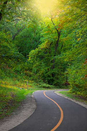 Lush green trees along scenic biking trail in rural Michigan