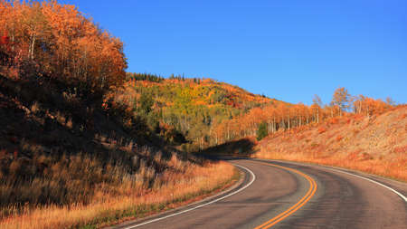 Scenic by way 133 in Colorado rocky mountains surrounded by fall foliage. 版權商用圖片