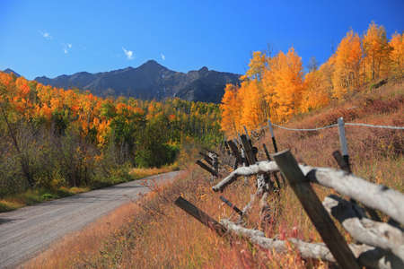 Old fence by rural back road with fall foliage in rocky mountains