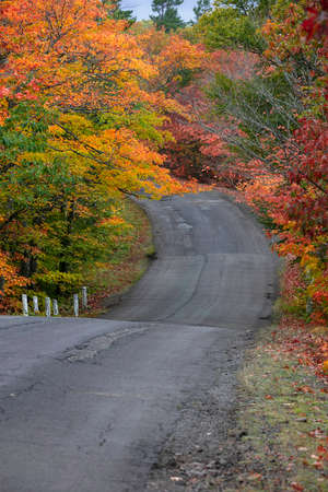 Autumn trees along Scenic Brockway mountain drive