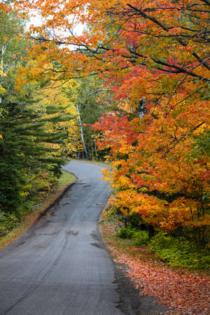 Colorful autumn trees along Brock way mountain drive in Michigan upper peninsula