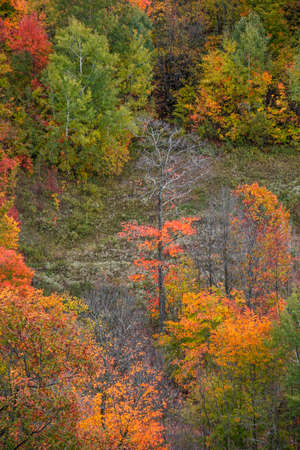 Aerial view of colorful autumn trees from Copper peak in Michigan upper peninsula