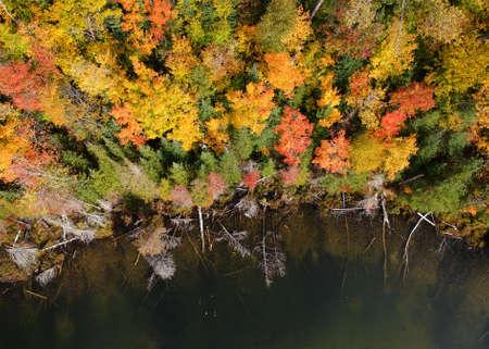 Aerial view of fall foliage along Council lake in Michigan upper Peninsula
