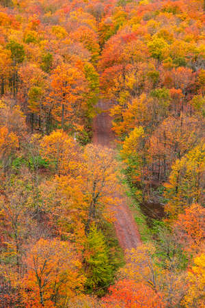 Aerial view of colorful fall foliage by the rural road in Michigan upper peninsula