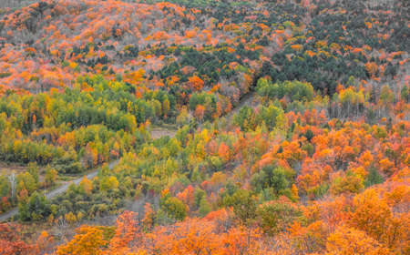 Aerial view of colorful autumn trees in Black river national forest from Copper peak in Michigan upper peninsula