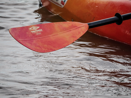 Red paddle for white water rafting and kayaking 版權商用圖片