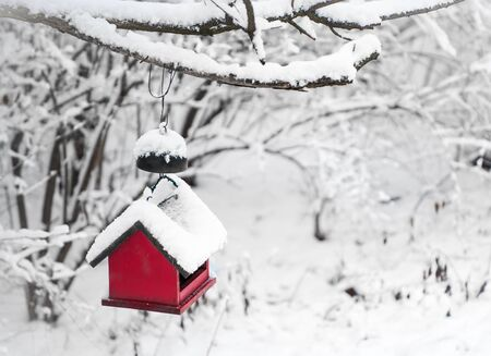 bird house: Red bird house hanging outdoors in winter covered with snow