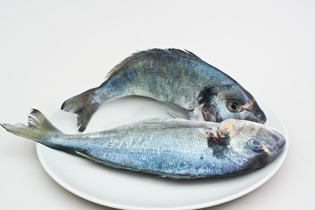 Two gilthead (dorada) fishes, raw in a plate.