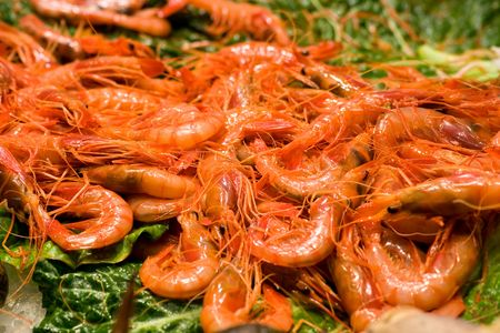 Shrimps display on a leaf at fish market Stock Photo - 3697664