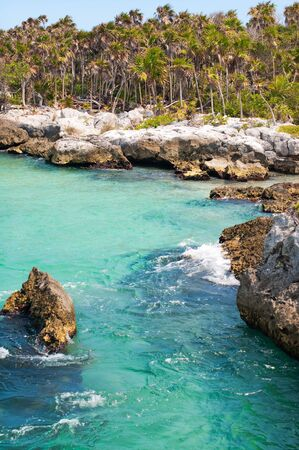 Rocky coast with jungle view. Xcaret, Mexico