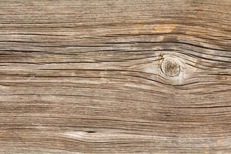 wooden boards: Texture of old wooden boards Stock Photo