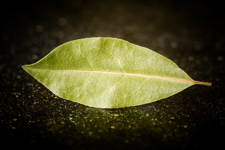 closely: Bay leaves on a black marble desk closely Stock Photo