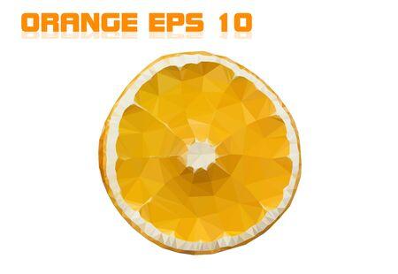Dried orange on a white background.