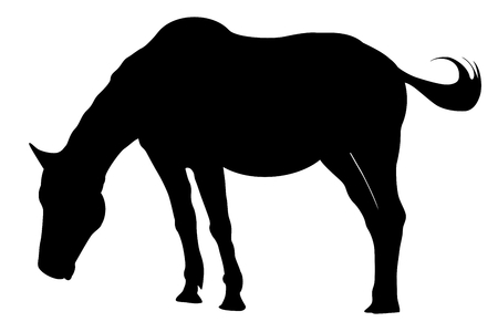 Dramatic: Silhouette of horse isolated on white background. Illustration