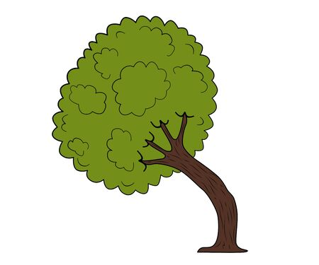 original single: Green spring tree isolated. Vector illustration