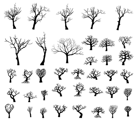 Large collection of silhouettes of trees. 38 silhouette of trees. Vettoriali