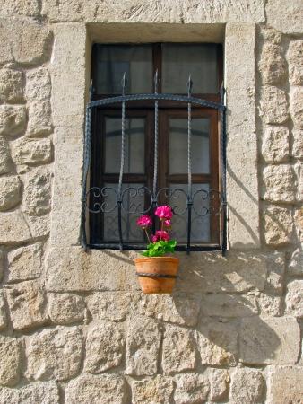 Flowerpot Stock Photo - 20231249