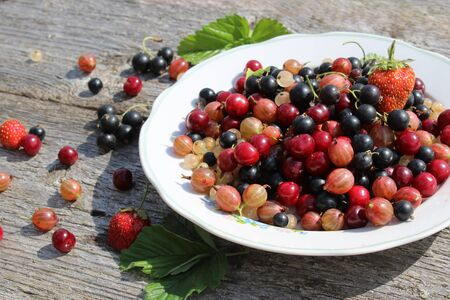 Fresh berries of white, black, currant, cherry, gooseberry and strawberry are on the plate and scattered around it. Imagens