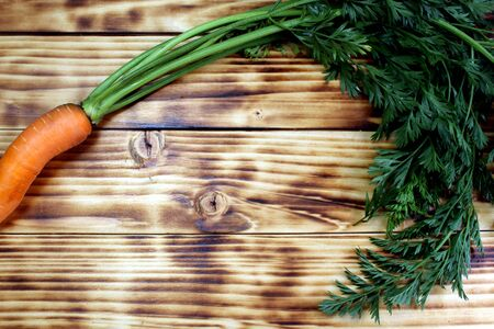 Fresh crop of carrots with bot lies on a wooden table
