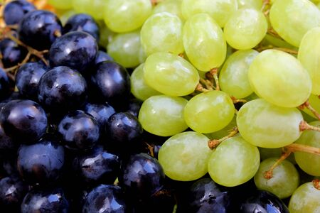 bunch texture fresh green and black grapes Stock Photo