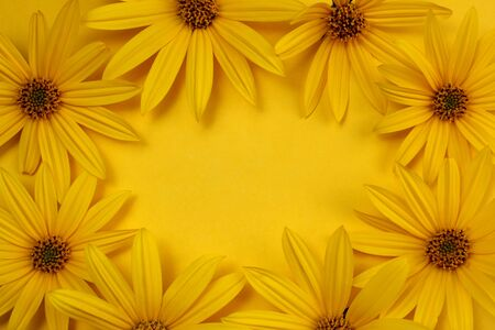 texture of fresh yellow daisies frame on a yellow background Stock Photo
