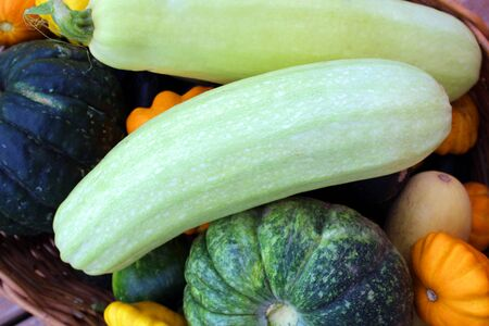 texture fresh harvesting fresh vegetables in autumn Stock Photo
