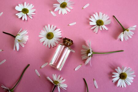 bottle with chamomile oil on a pink background