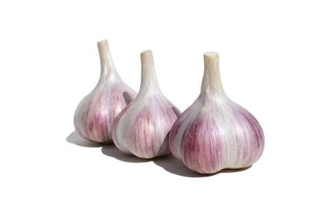 Three heads of garlic stand on a white background Stock Photo