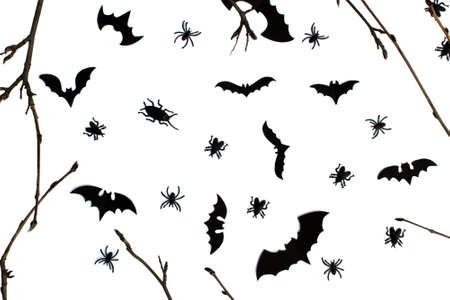Background for halloween twigs and, bats and cockroaches on a white background