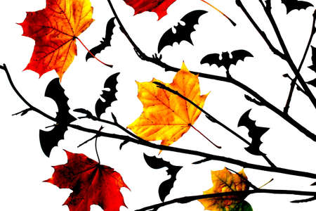 Halloween card with bats, autumn leaves and branch isolated on white background