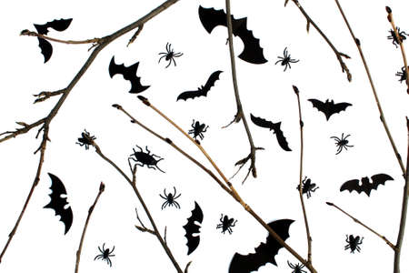 Background for halloween twigs and, bats and cockroaches on a white background Stock Photo - 156609682