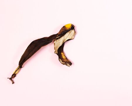 The dried skin of a banana is similar to the dry skin of a persons face. Design concept of death. This is the withering before the end. The beauty of the Design concept. Banco de Imagens
