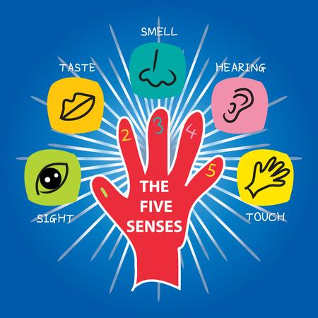 Projekt wektorów pięciu zmysłów z różnymi częściami ciała. Ilustracje wektorowe