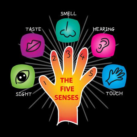 Die fünf Sinne isoliert auf einfachen schwarzen Hintergrund