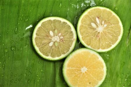 Fresh lime  slices