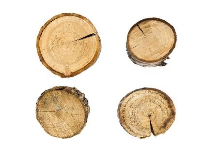 木の年輪をクローズ アップで孤立した白い背景
