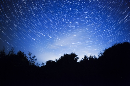 night sky, star trails and the forest