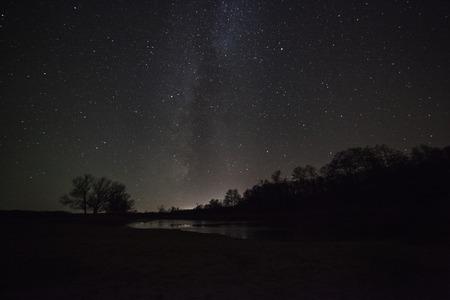 美しい夜空、天の川と木 写真素材